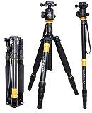koolehaoda Profeshional Q666 Tragbare Aluminiuml Kamera Stativ Einbeinstativ & Kugelkopf SLR-Kamera Canon Nikon Sony Stativ