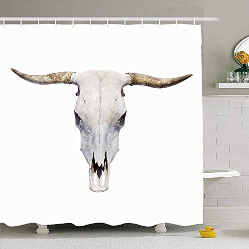 May--Temple-Shower curtain Duschvorhang für Badezimmer Cow Bull Skull Draufsicht Tiere Nahaufnahme Wildlife Longhorn White Horn Western Wild Head Bone Animal Waterproof -