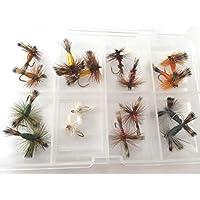 Irlandés Wulff seco moscas 16moscas juego en libre mosca caja tamaños 10–14Excelente calidad trucha moscas paquete # 312