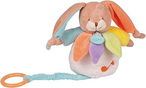 Baby Nat' Boîte à Musique Lapin Arc en Ciel Multicolore
