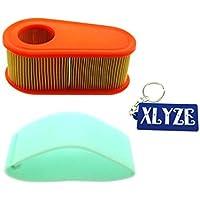 xlyze Filtro de aire para Briggs & Stratton 795066111p02111p05112p02112p0511p90211p90511p907121q02121q07121q12