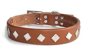 NWYJR En cuir collier pour chien réglable confortable Durable anti-morsure pour gros chiens de petites et moyennes (cou 48 cm - 58 cm)