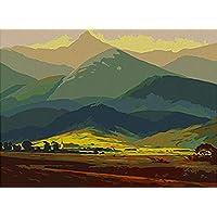 QAZZSF Cuadro De Pintura Al Óleo Pintura por Números Paisaje De Montaña DIY Lienzo Pintura Al Óleo Digital Arte De La Pared 40X50CM Arte y manualidades