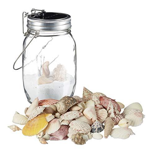 2 tlg. Deko Set, Solarleuchte im Einmachglas, Muschel Mix mit Meeresschnecken, Solar Glas mit 4 LED, Dekomuscheln 500 g