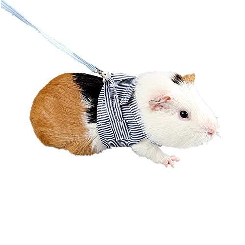 Aofocy 1 Pcs Hamster Gilet Laisse en Coton Respirant...