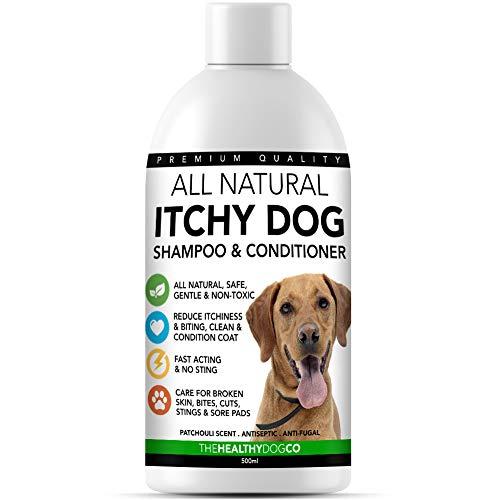 All Natural Shampoo per Prurito di Cani | Patchouli 500ml | Shampoo Sollievo da Prurito e Allergie | Ipoallergenico per Cani con Cute Sensibile | Aiuta nel Trattamento di Prurito, Lesioni e Ferite