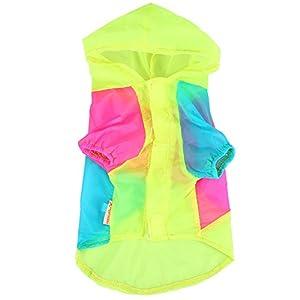 Chien Crème Solaire Chemise Mince Contraste Couleur Été UV Preuve à Capuche Vêtements Rash Guard Pet Été Tissu Chiot Protection Chiot Veste Chien Manteau Combinaison