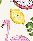 Agenda 2018/2019: Organizador y planificador personal, diseño colorido con flamenco tropical - Agenda con frases motivacionales (Octubre 2018 - diciembre 2019, 20 x 25 cm)