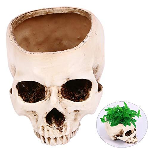 f Neuheit Kopf Knochen Blumentopf Aschenbecher ()
