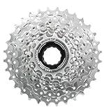 Schraubzahnkranz 8-Fach für E-Bikes 13-32 Zähne