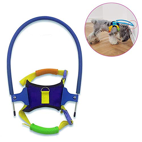 DSGYZQ Blind Pet Anti-Collision Ring, Blind Dog Harness Cataract Animal on