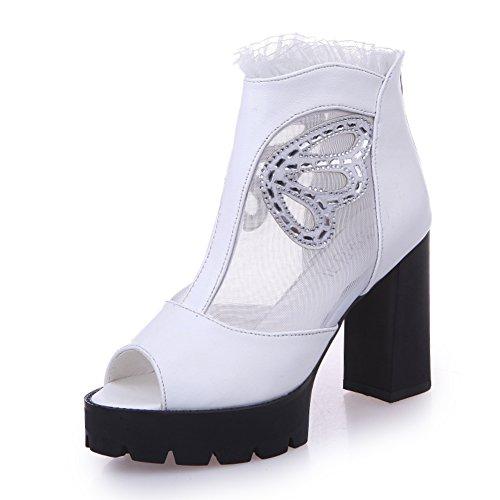 Printemps/Eté fashion Lady Gao Bangfang talon/Version coréenne de chaussures de loisirs Joker maille A