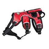 GWM Hundegeschirr, Brustgurt, Weste, Mittlerer Hund, Großer Hund, Explosionsgeschützt, Refletive, Hundegeschirr (Farbe : Rot, größe : M)