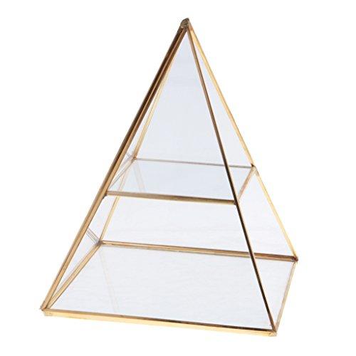 Homyl Pyramide Glas Schmuck Box Anzeige Inhaber Lagerung Veranstalter Gold Schmuckkästchen (Glas-lagerung)