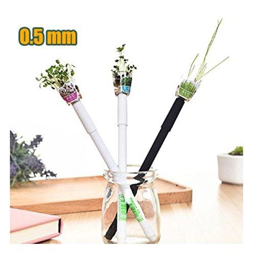 Bolígrafo de bola con planta, disponible en dos colores de fotos blanco o negro, tres diferentes tipos...