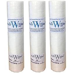 Nature's Water Lot de 3 cartouches filtres à particules sédimentaires en polypropylÚne 25 cm 1 micron