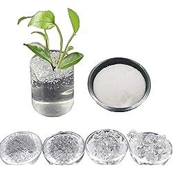 Inception Pro Infinite (100 Gr) Hydrogel - Kaliumkristalle - Polymer - Superabsorber - Polyacrylat - Saft - Superterra - Für Gartenarbeit - Blumen - Landwirtschaft - Kultivierung