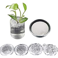 Inception Pro Infinite (1 kg Gel de Cristales de potasio Marina alimentaria para Crear superterra