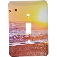 3DROSE llc. Lsp 190766_ 1usa, Washington, Olympic NP. Canada Geese Flying Past Rialto Beach.–singolo interruttore a levetta, multicolore