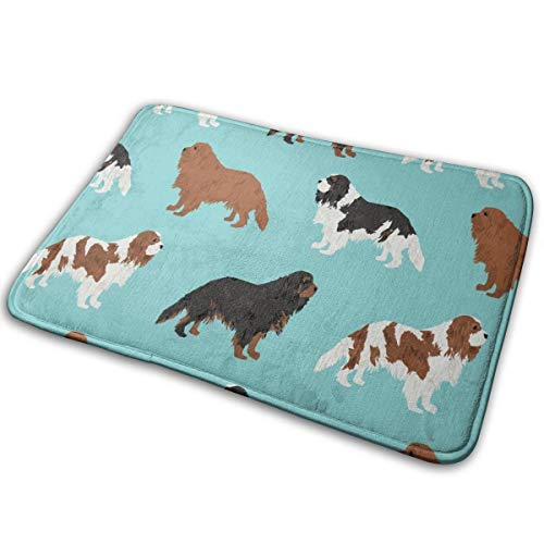 OOworld Fußmatte Cavalier King Charles Spaniel Stoff Cute Dog Pet Dogs Blemein Stoff Ruby Cavalier Black and Tan Hund Cute Dog Coat Hunderasse Fabric_562 40 x 60 cm -
