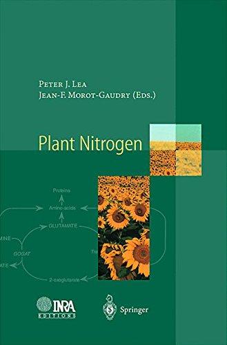 Plant Nitrogen