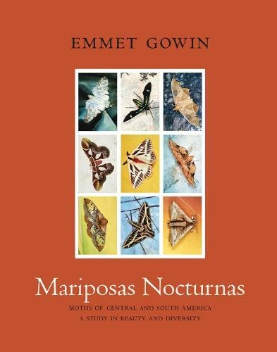 Mariposas Nocturnas: Moths of Central and South America, A Study in Beauty and Diversity Mariposa Tiere