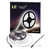 LE Lighting EVER Ruban LED Lumineux 5M, Etanche IP65 SMD 5050 300 LEDs, Blanc Froid, Bande Lumineuse Flexible pour Mariage, Noël, TV, Cabinet, Escalier, Vitrine, Balcon etc.