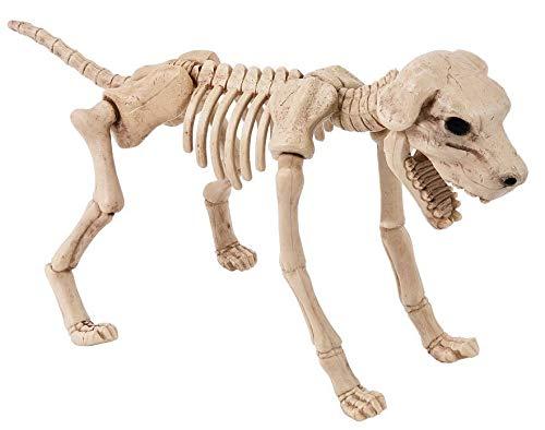 Skelett Zombie Hund XL Halloween Schocker Köter frei stehender Tier Horror über 0,4 Meter groß (Hunde Für Halloween)