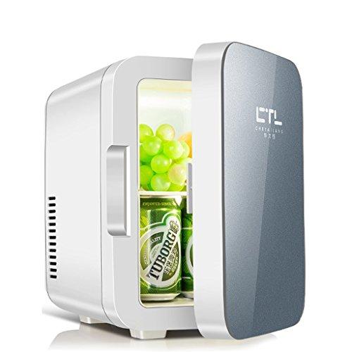 Sunjun 6L Kühlung Auto Kühlschrank, kalt und warmes Auto Dual-Use einfach zu 220V AC / 12V DC zu tragen ( Farbe : Grau )