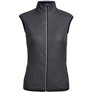 412wJfePZqL. SS300  - Icebreaker Women's Rush Vest Folds Mid Layers