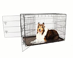 Carlson Secure & Compact Double Door Metal Dog Crate, Extra Large