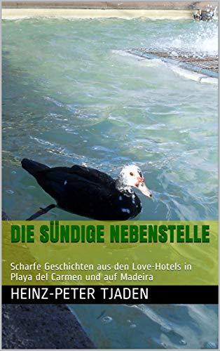 Die sündige Nebenstelle: Scharfe Geschichten aus den Love-Hotels in Playa del Carmen und auf Madeira (Love-Hotel Karibische See  134)