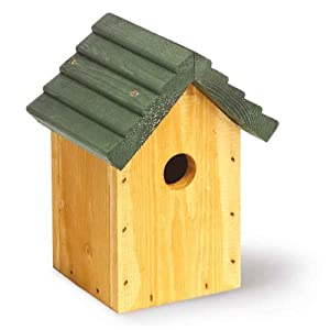 Tom Chambers 32mm Entrance Cosy Bird Roof - Green