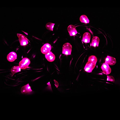 House of Fun Cordoniere Extérieur LED Violet