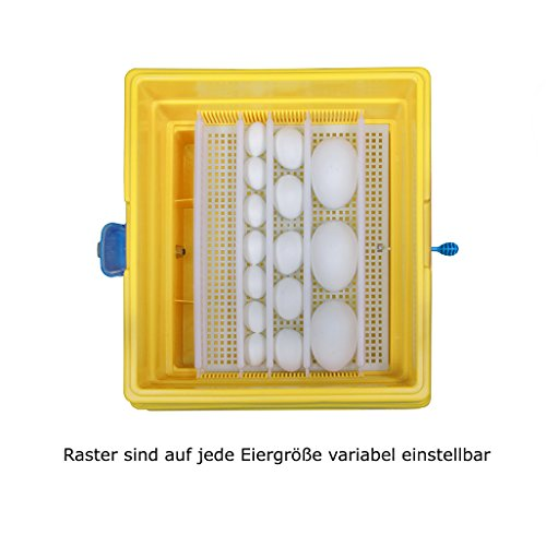 Covatutto 24 Motorbrüter / Brutmaschine – Halbautomatisch – Energiesparmodell - 4