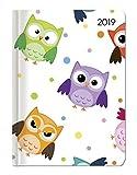 Ladytimer Funny Owls 2019