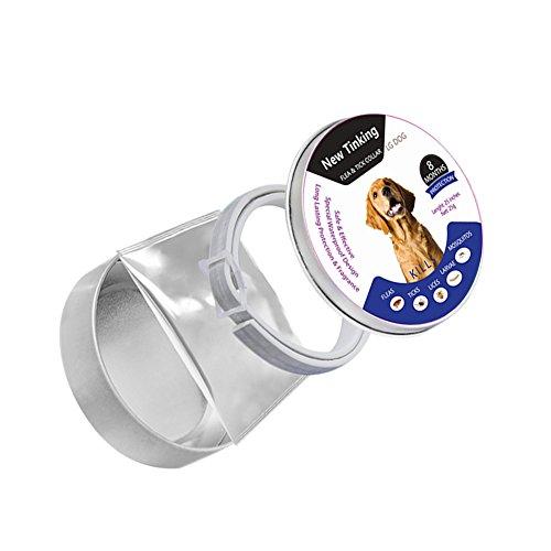 Sue Supply Collar perros 8 meses protección, ajustable