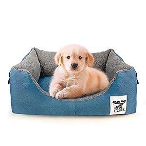 Zeewoo Panier pour Chien, Lit pour Petit Chien Chat Animaux Confortable Déhoussable et Lavable, Bleu, S 60 x 48 x 20cm