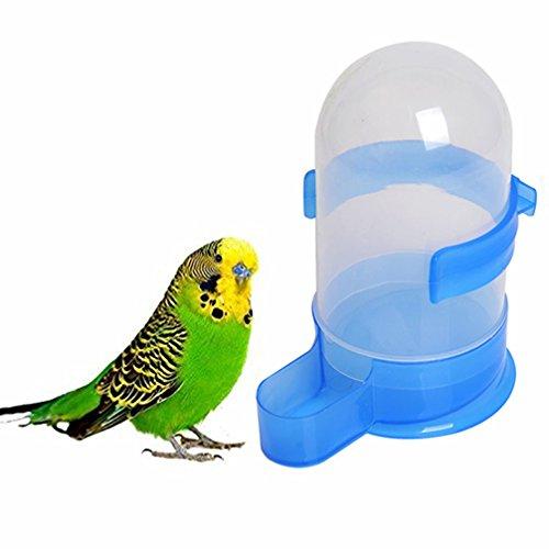 Hianiquaime 500ml Bebedero para Pajaros Comedero Loros Dispensador Automático de Agua para Mascotas Aves Loros Grandes Puede ser Colgado en Jaula Accesorios de Pajaros