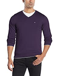 Blackberrys Mens Cotton Sweater (8907196594691_BT-DEBIAN_42_Parachute Purple)
