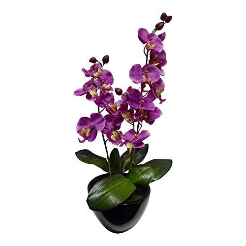 UK Große rosa Orchidee Künstliche Topfpflanzen 46cm hoch mit Blumen, Seide, in Keramik rund schwarz Pflanzgefäß Topf–Haus Büro oder Innenbereich–Atemberaubende Zimmerpflanze