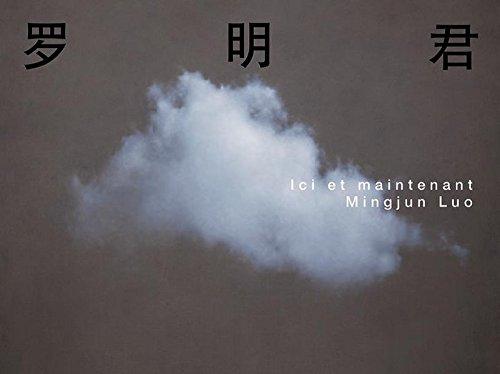 Mingjun Luo : ici et maintenant par Bernard Fibicher