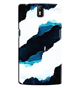 Blue Throat Sky Pattern Printed Designer Back Cover For OnePlus One