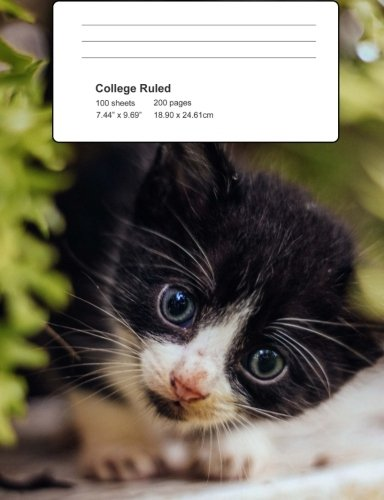 Kittens: Kitten Lover Composition Book For School. Kitten Exercise Books College Lined 200 pages.