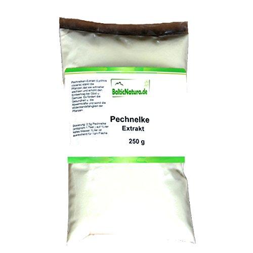 Pechnelkenextrakt (250 g) Pflanzenstärkungsmittel Pechnelken Extrakt Pechnelke Pulver