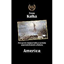 America (Libri da premio)