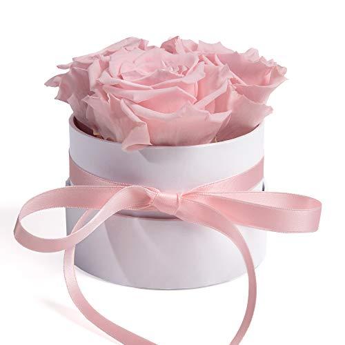 ROSEMARIE SCHULZ Heidelberg Flowerbox rund Infinity Rosen Rosa - Blumenbox in Weiß 3 konservierte Rosen Infinity Blume