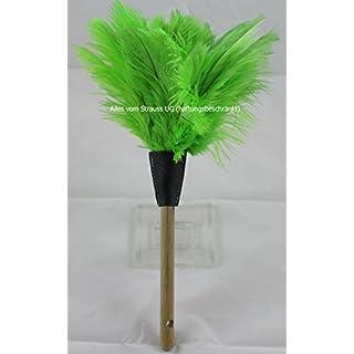 Staubwedel Straußenfedern mit grünen Federn - Gesamtlänge ca. 32 cm