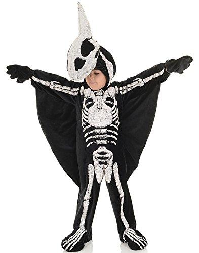 Underwraps Pterodactyl Fossil Toddler Childs Halloween Costume-M - Pterodactyl Kostüm Kind
