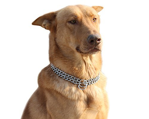 Moonpet - collare per cani domestici a catena in acciaio inox,2file, cromato, regolabile